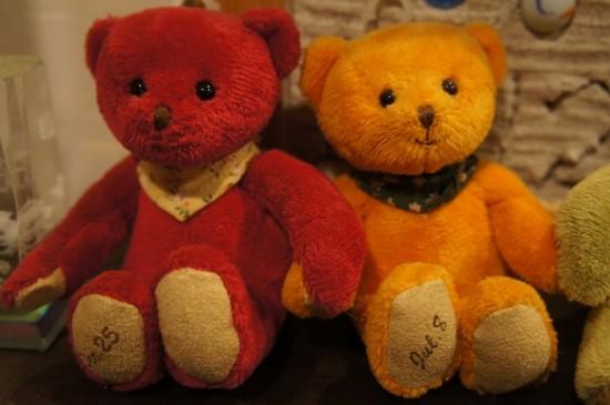 tb365-bear